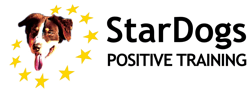 StarDogs Logo