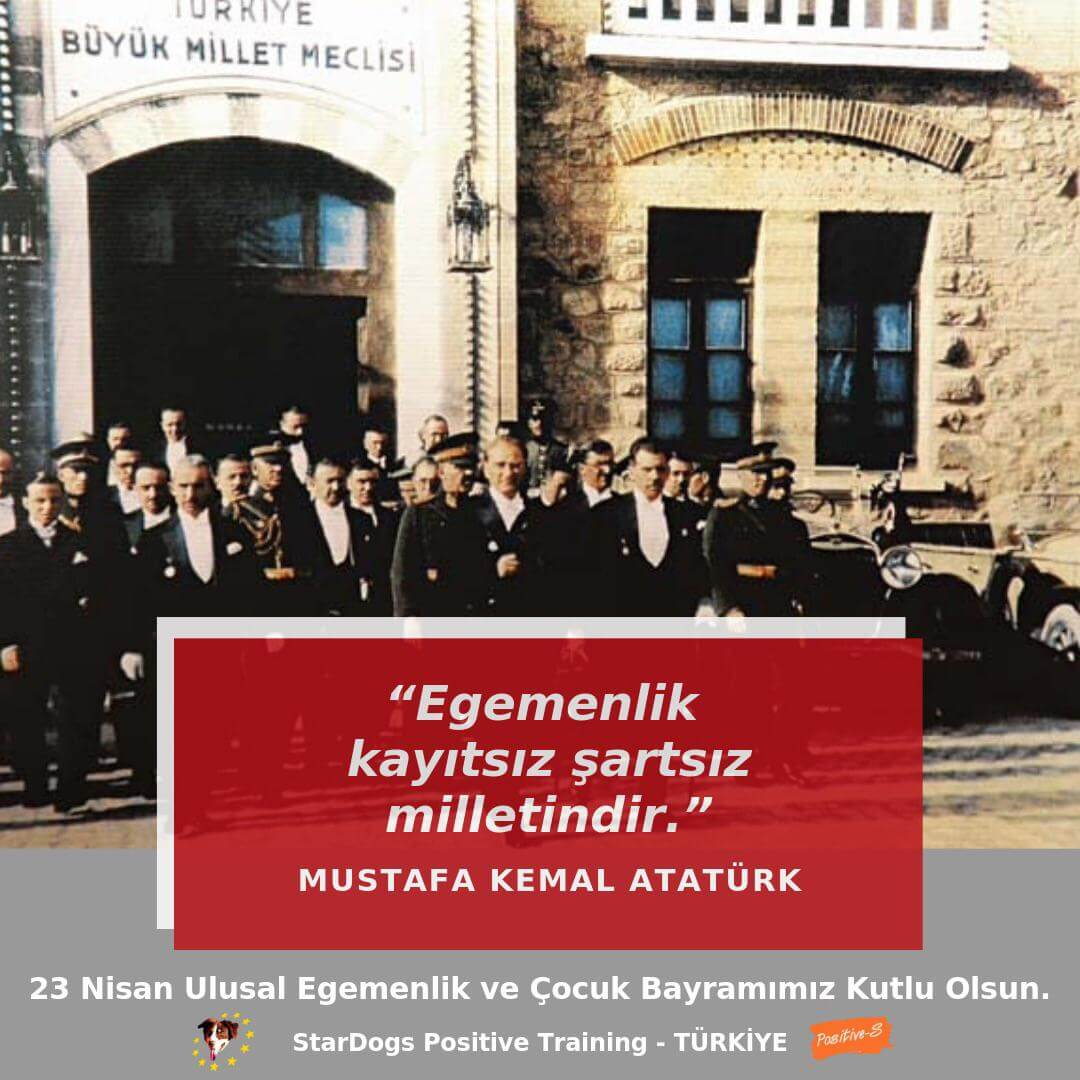 StarDogs Türkiye 23 Nisan 2020