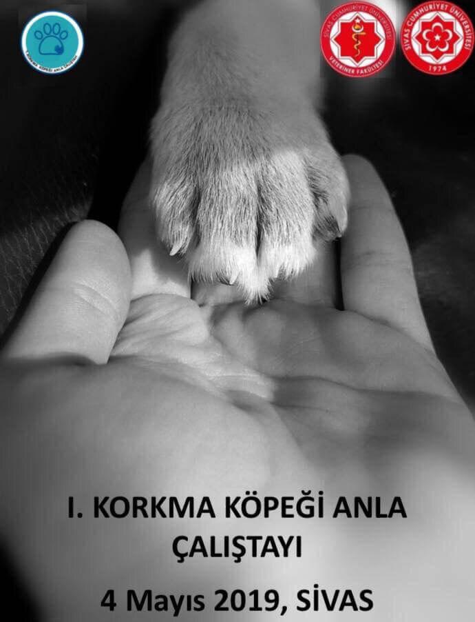 Korkma Köpeği Anla Çalıştayı Afişi