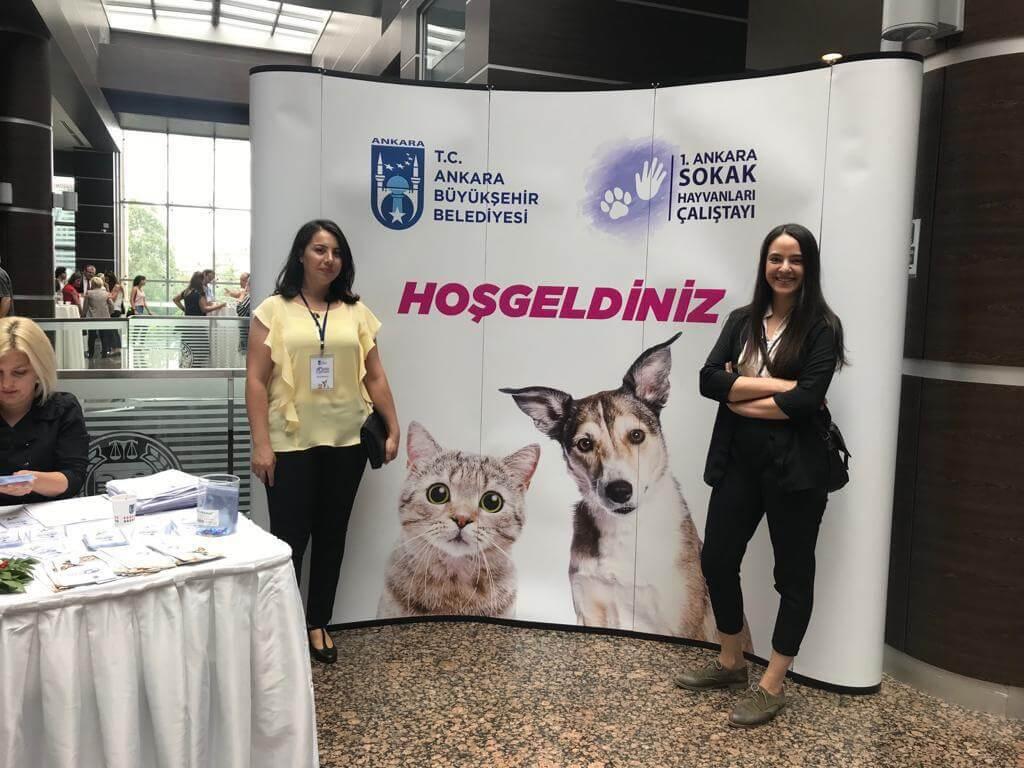 1. Ankara Sokak Hayvanları Çalıştayı